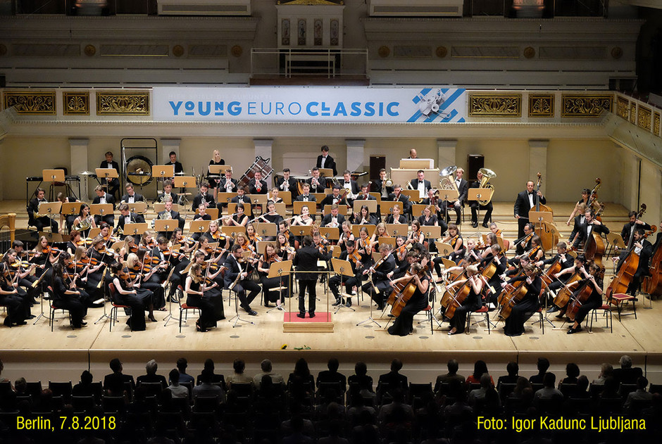 Symphonic orchestra on the tour in Berlin