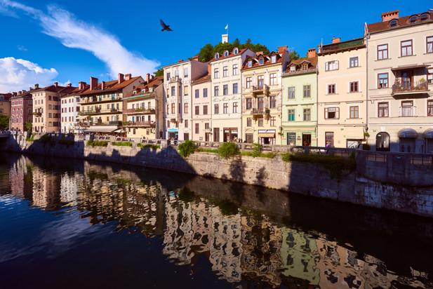 The riverbank of Ljubljanica