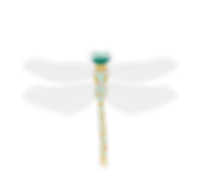 Dragonfly-01.png