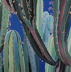 karen-thomas-studio-morocco-cactus-serie