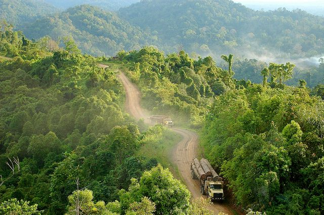 East Kalimantan 4