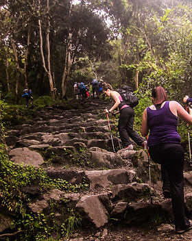 Ascending the Inca Trail, Peru.jpg