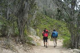 Inca Trail_KM82 Peru.jpg