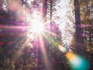 Cadeau vanuit de lichtwereld- Ontwikkelen-In mijn kracht staan