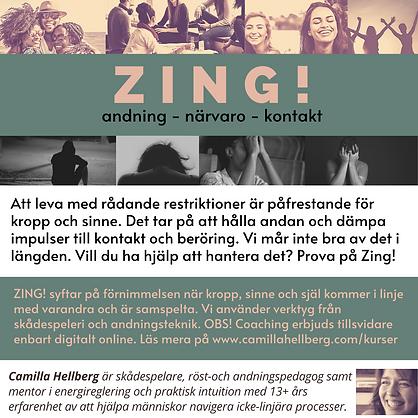 Zing (1).png