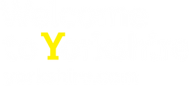 WTY-logo-WHITE-yellow-Y-_1_.png