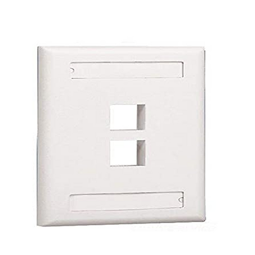PLACA DE PARED DE 2 PUERTOS ICONEABLE COLOR BLANCO, MARCA PANDUIT