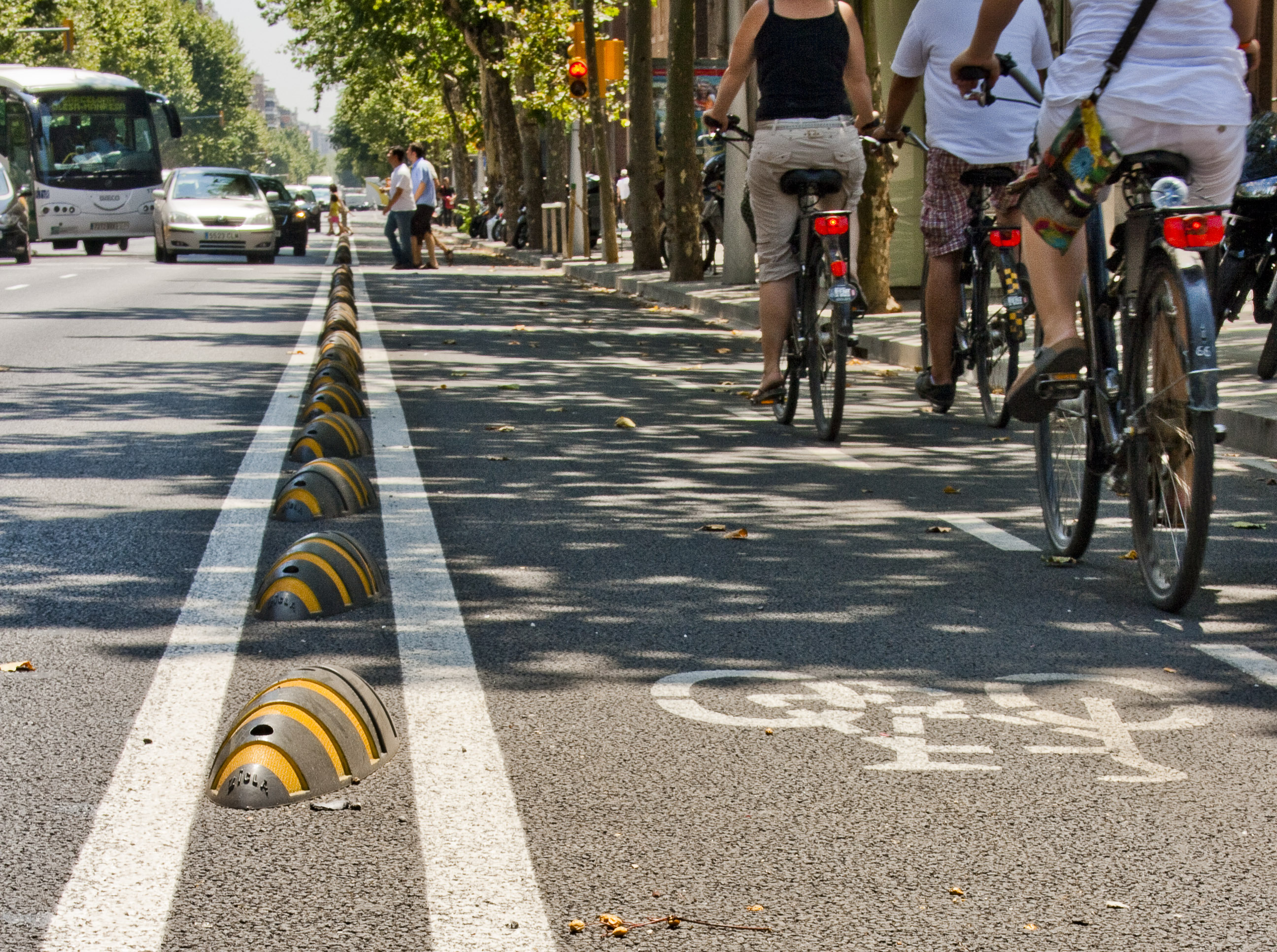Zebra Cycle Lane Separator