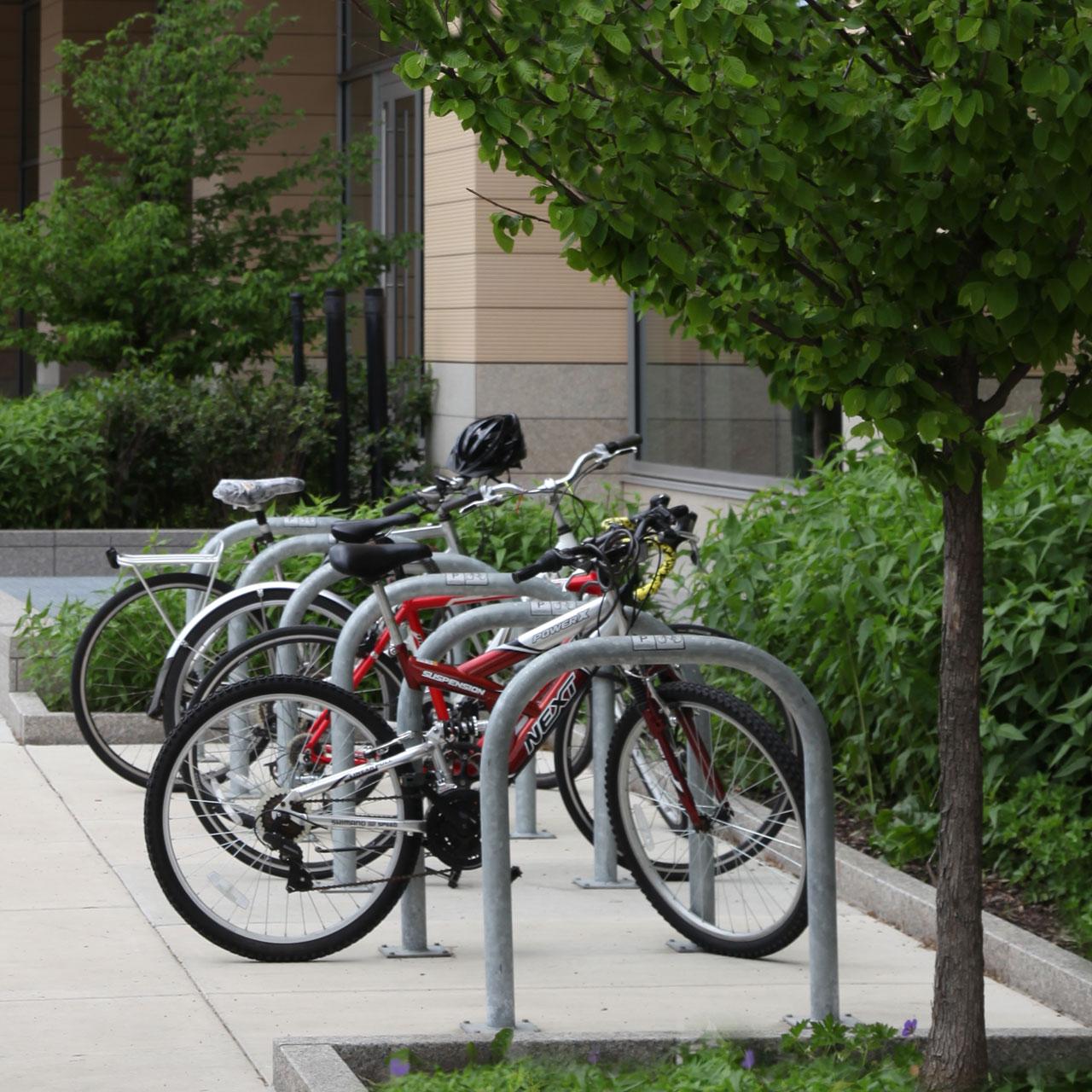Bike Dock