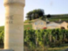 Chateau Pavie, Pavie, Fine Wine Investment, Wine Investment, Fine Wine, bordeaux