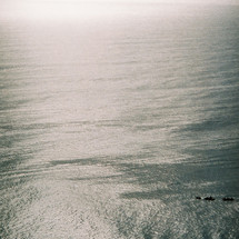 Cape Byron, view North