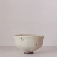 Shigaraki Shell Teabowl