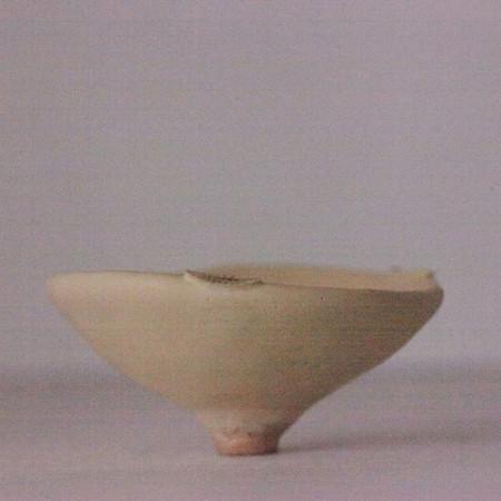 Shigaraki / Tajimi Bowl