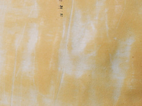 Shellgrit Cornucopia (detail)
