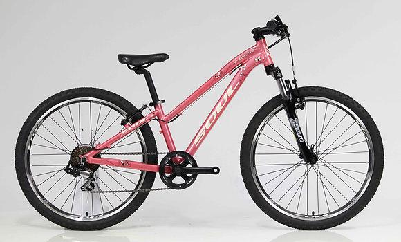 Bike Soul Florinha