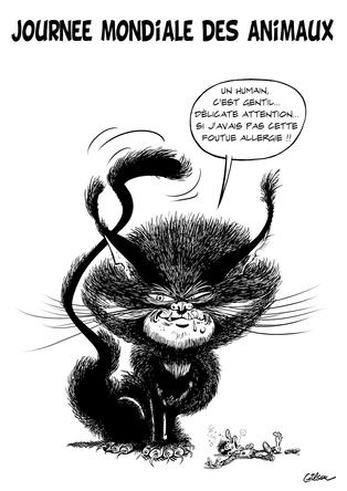 monstrocat.png