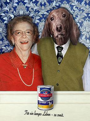 Hundefutter_Anzeige.jpg