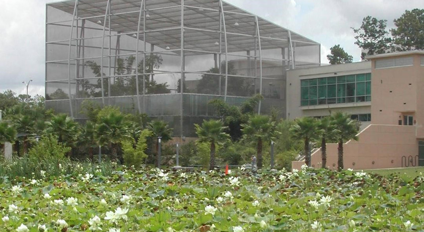 McGuire Center for Lepidoptera