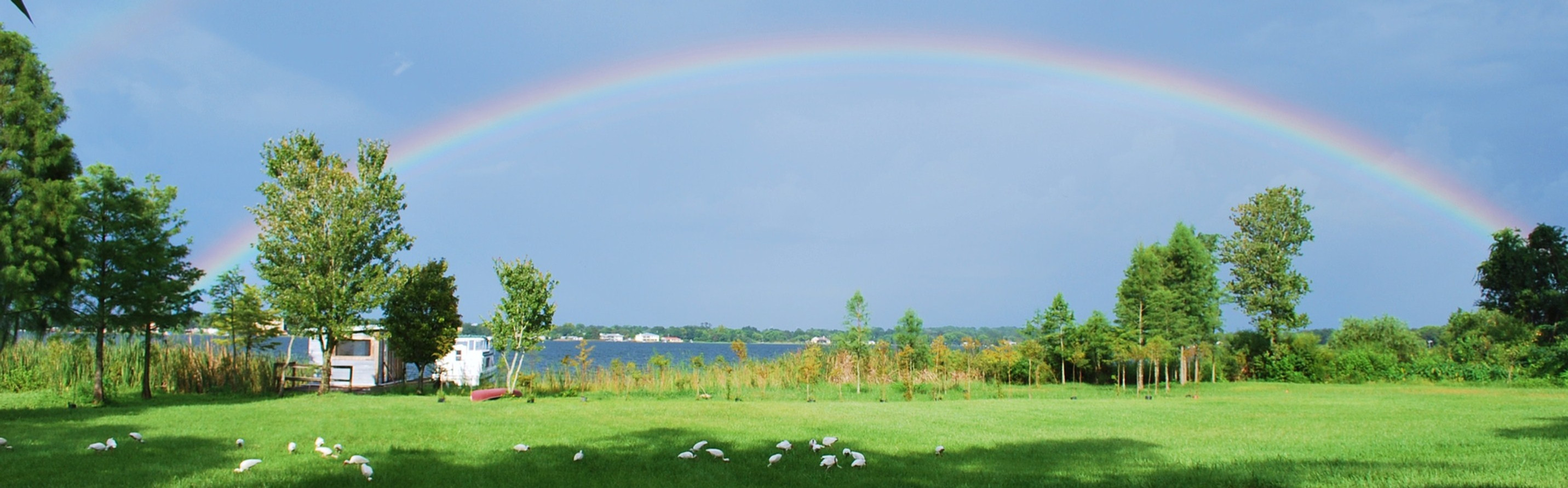 Office Lake View