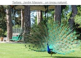 Jardin Massey Tarbes.jpg