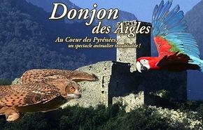 Donjon des Aigles.jpg