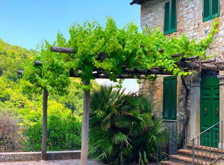 "5 reasons I chose to ""travel slow"" for my first post-Covid 19 trip: Cammino dei Borghi Silenti"