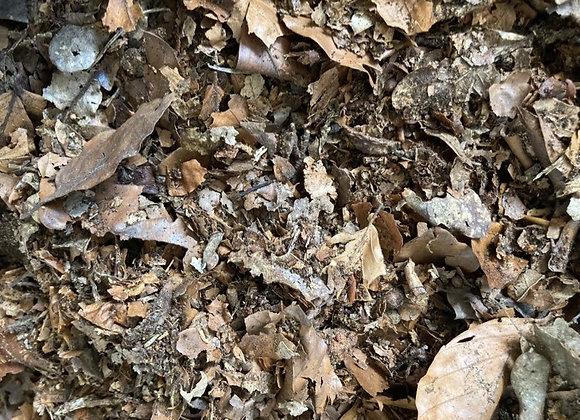 Oak Leaf Mulch
