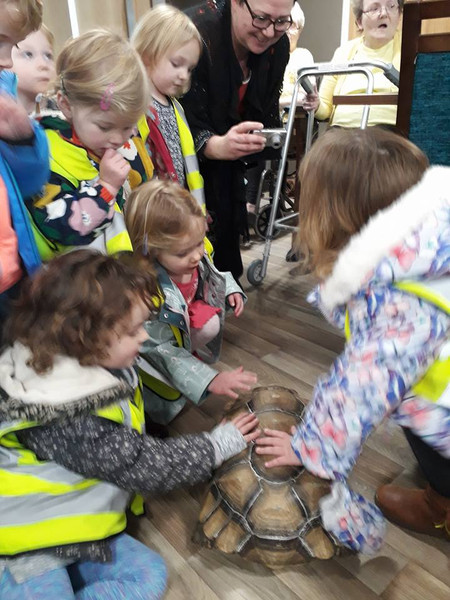 Lots of exotic animals came to visit us