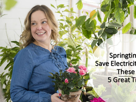 Save Electricity 5 Springtime Tips