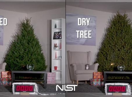 El árbol de Navidad y ahorrando electricidad esta Navidad