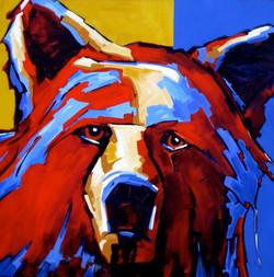 """Serious Bear   36"""" x  36"""""""