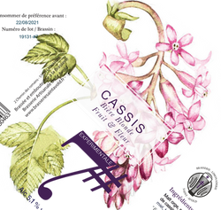 cassis%2075cl%20(1)_edited