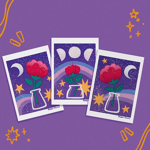 Conjunto Flor da lua
