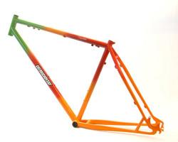 צביעת אופניים