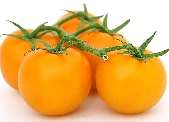 Tomate Gold Nugget Graines