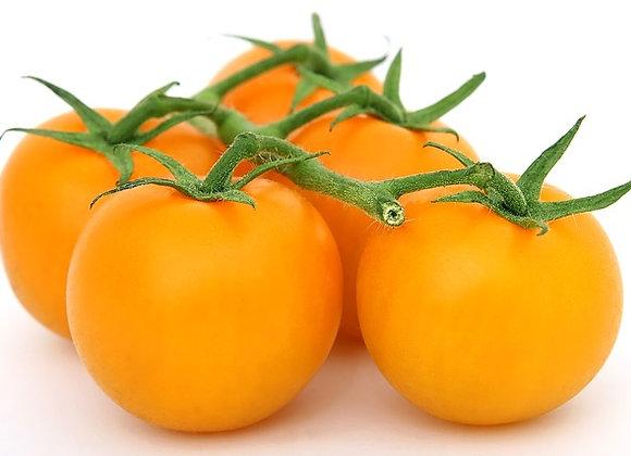 Tomate Yellow en Poire Graines