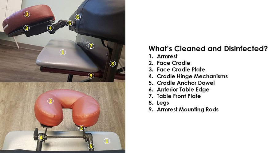 Integrity Chiropractic Massage Table Hea