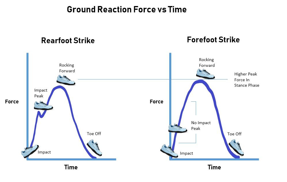 kirkland chiropractor showing ground reaction forces