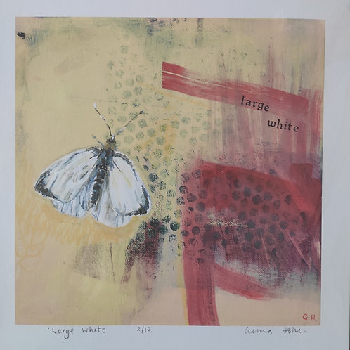 'Large White' Gicleé