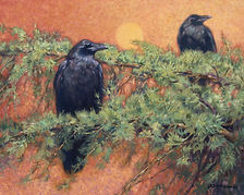 Randal Dutra - Wildlife Paintings