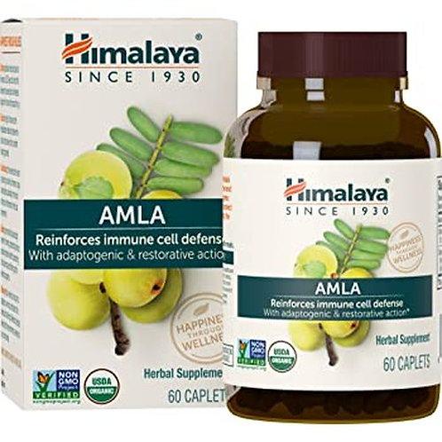 Himalaya Amla 60 caps