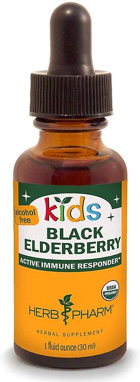 Herb Pharm Kids Black Elderbery   30 ml