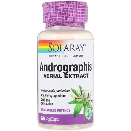Solaray Andrograhis Aerial Extract 300 mg  60 caps