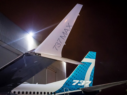The Evolution of Winglets