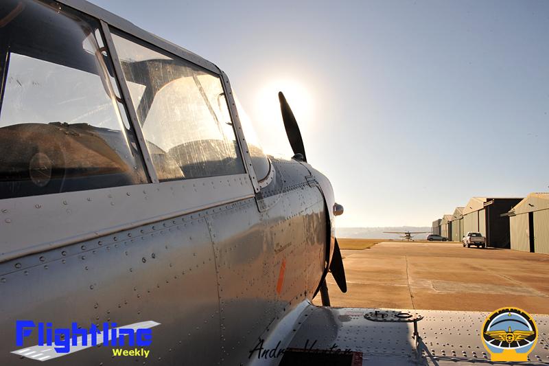 spot landing 1 (70)