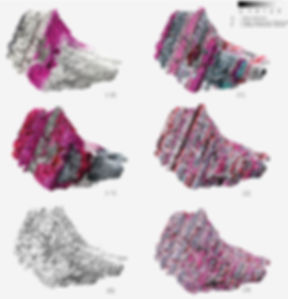 Oscillating_Res_Texturefriction.jpg