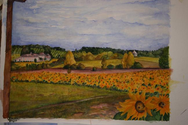 landscapes-web28.jpg