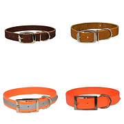 This a collage picture of dog collars for wearing in the field hunting and for dress.