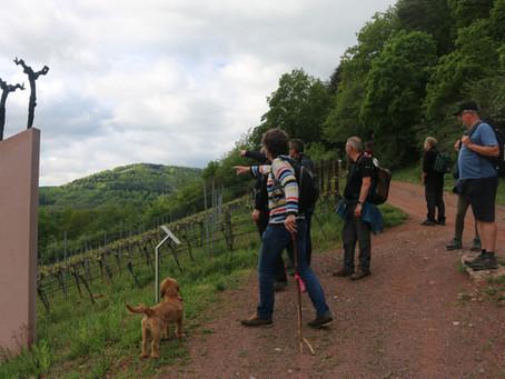 Wijnwandelreis Pfalz mei 2019 - een verslag