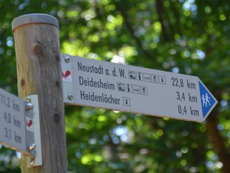 Pfälzer Weinsteig van Deidesheim naar Bad Dürkheim - Pfalz